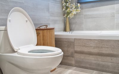 7 Amazing Benefits of Installing a Bidet Toilet Combo